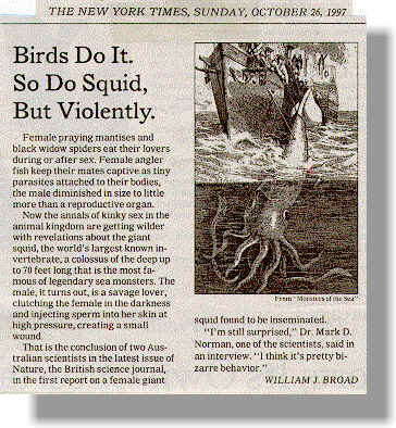 Birds Do It. So Do Squid But Violently.